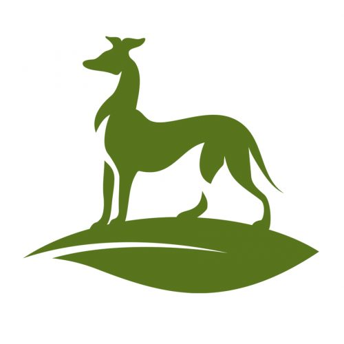 Greyhound-green