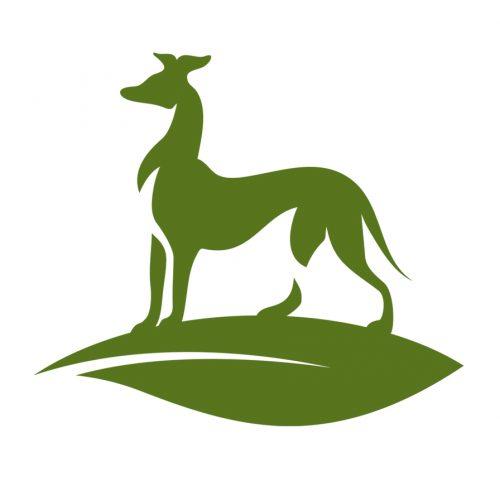Greyhound-green